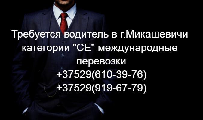 file_4aee033.JPG