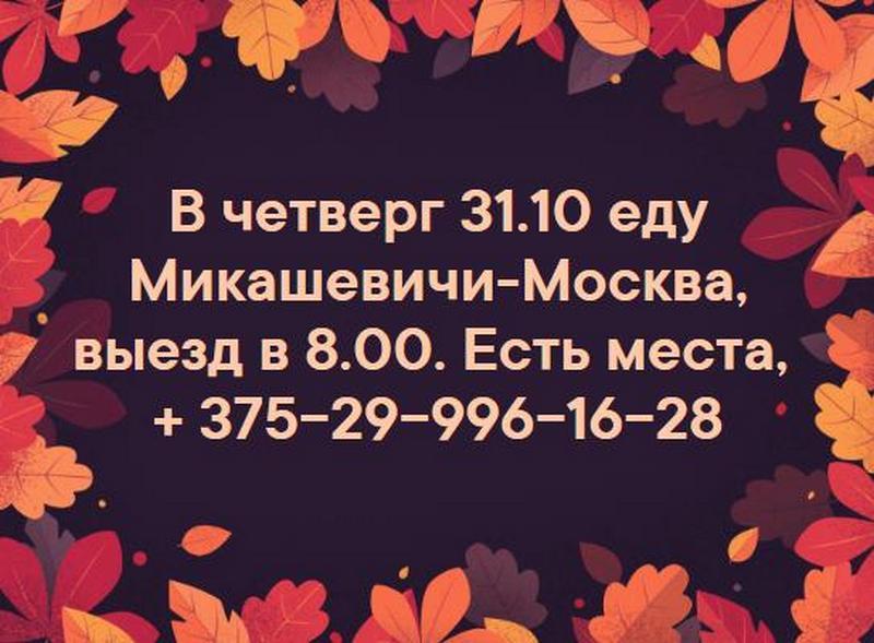-_2019-10-25.JPG