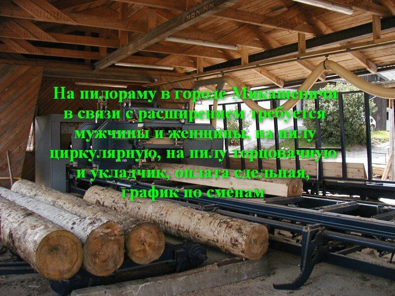 6e82501d398e3e431ca0ce108f9b32841.jpg