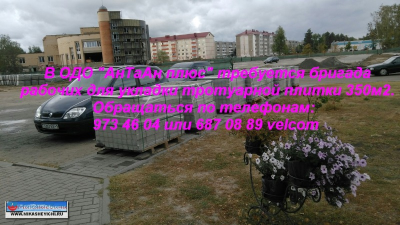 VmIe3gXMn7A.jpg