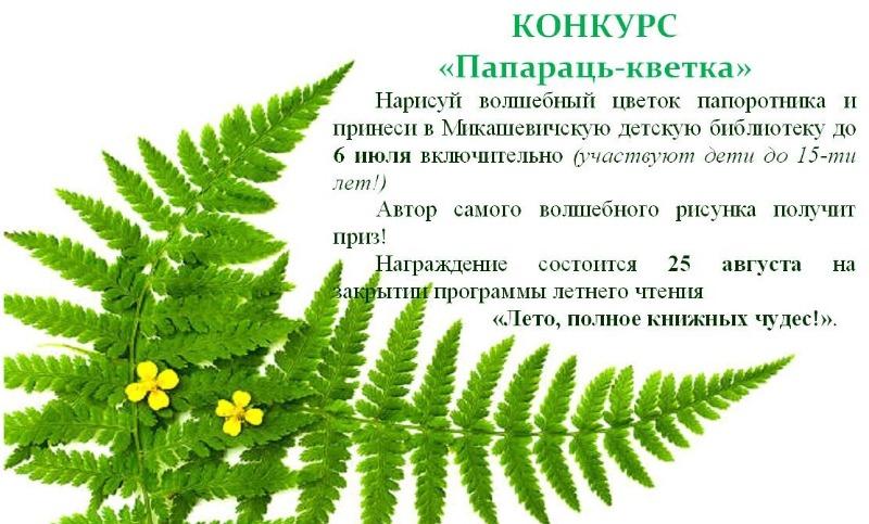 i_2021-06-29.jpg